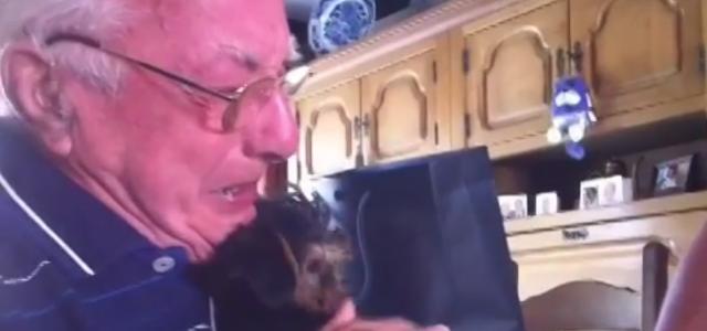 泣けるサプライズ。63年寄り添った妻と愛犬を失った祖父に、孫から『犬』のプレゼント。