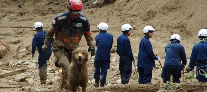 【広島土砂災害】傷つき泥にまみれながら・・・救助犬たちは活動を続ける。私たちに出来ることは…