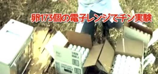 【 衝撃動画 】 卵173個を電子レンジでチンすると??