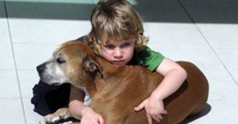 【感動】なぜ犬は僕たちより早く死んでしまうの?