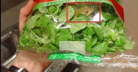 海外で起きた食品の異物混入事件!!