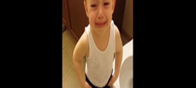 少年は大好きだった金魚を自ら弔い、大切なものを失う悲しみを知った。
