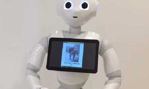 世界初の感情認識ロボット、ツッコミ力はどれくらいか?