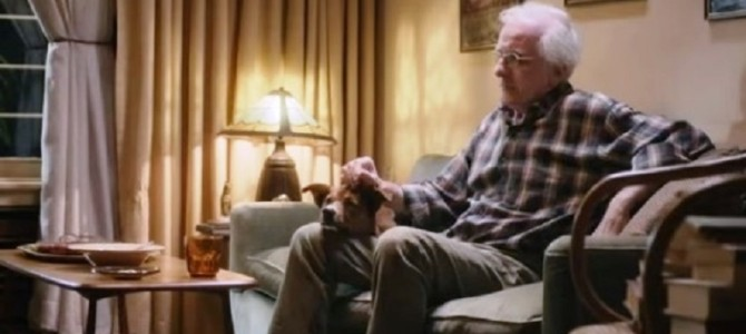 急病で倒れ、救急車で運ばれた飼い主を待ち続ける犬。衝撃のラストに涙が止まらない・・・
