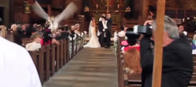 バージンロードを飛んで指輪を届けに飛ぶフクロウ。めちゃステキな結婚指輪交換!