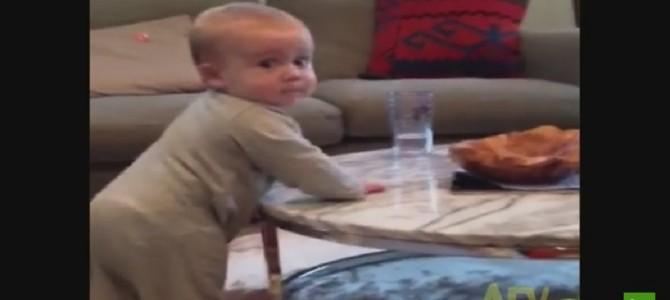 コップを落とそうとする赤ちゃんとママの戦い♡