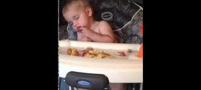 眠い眠い… 食べなら寝落ちしちゃう赤ちゃんが超かわいい!