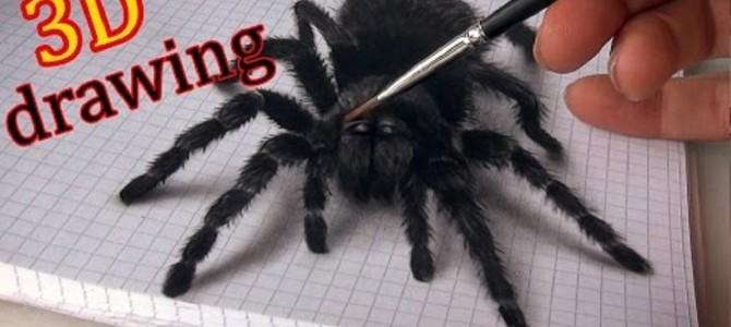 3Dに見えるクモの絵がリアル過ぎる!