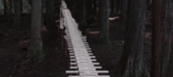 森に作られた木琴が奏でる自然の音色。ドコモ史上もっとも素晴らしいCM