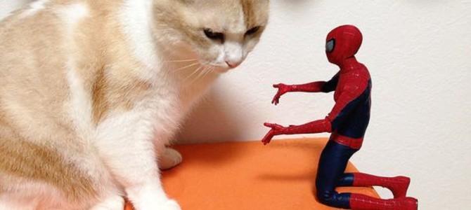 「仕事だよ。ホラ、行こう!」遊び心満載、ペットとフィギュアの共演画像