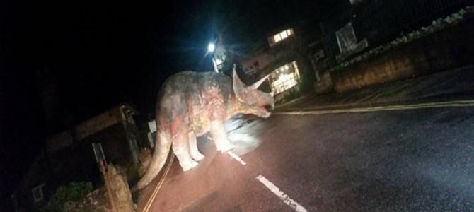 道路にトリケラトプス⁉ドライバーたちが腰を抜かしてしまった英ワイト島のある夜