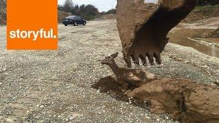 工事の映像かと思ったら、泥の中から出てきた「モノ」にびっくり!