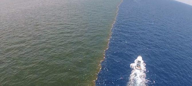 ミシシッピ川とメキシコ湾の合流地点。どこまでも混ざらない神秘の光景!