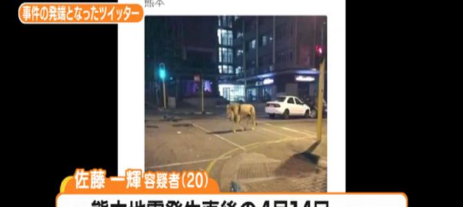 熊本地震で「動物園からライオンが逃げた」と嘘ツイートした男、逮捕される