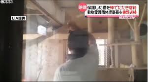 【動物虐待】水戸市動物愛護団体・理事長の名前は矢野智一!顔画像や経歴、Facebook