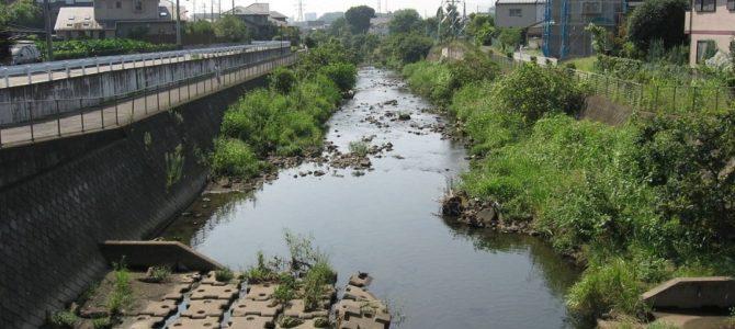 東京都および神奈川県大和市などを流れる境川が氾濫危険水位を超え